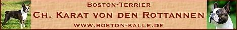 Boston Kalle